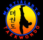 Martial Arts Taekwondo and Karate in Lewisville